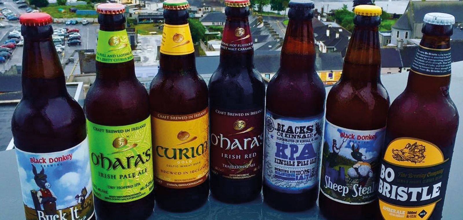 Craft Beer in Sheraton Athlone Hotel